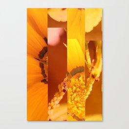 crash_ 21 Canvas Print