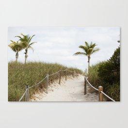 Sandy Dunes, Miami Canvas Print