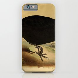 Black Guineafowl phasidus niger2 iPhone Case
