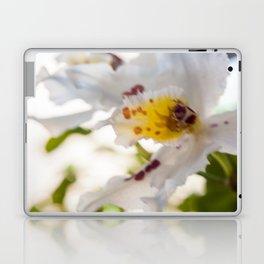 Orchid White Laptop & iPad Skin
