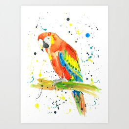 Parrot (Scarlet Macaw) - Watercolor Painting Print Art Print