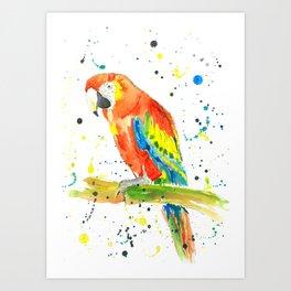 Parrot (Scarlet Macaw) - Watercolor Painting Print Art Print