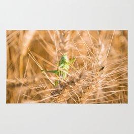 green grass hopper Rug