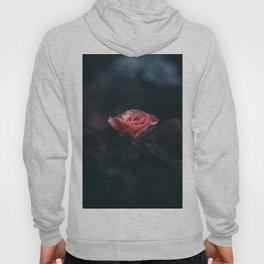 Single Pink Rose Bloom In Darkness Hoody