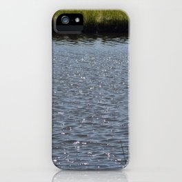 Natures Treasure New Jersey Marshland Addition iPhone Case