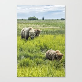 A Mother and Her Two Cubs, No. 3 Canvas Print