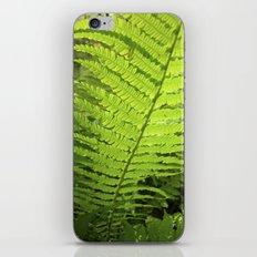 green fern leaf XXVI iPhone & iPod Skin