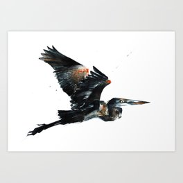 Heron Wings Up Art Print