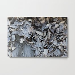 A Frosty Walk in the Woods Metal Print