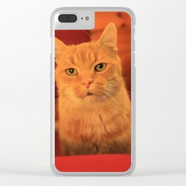Cat in Red with milk mustache Clear iPhone Case