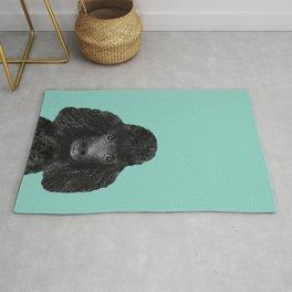 Toy Poodle black poodle pet portrait custom dog art dog breeds by pet friendly Rug