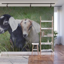 Playing Goats Wall Mural