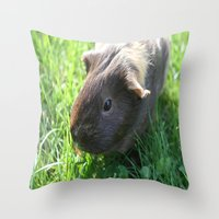 guinea pig Throw Pillows featuring Guinea Pig by Rose&BumbleBee