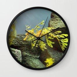 Leafy Sea Dragon with Rocks Wall Clock