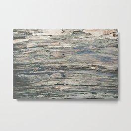 Old Rotten Wood Metal Print