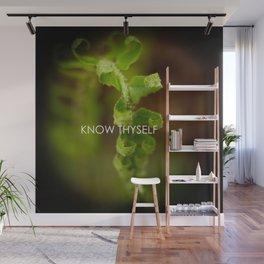 Know Thyself Wall Mural