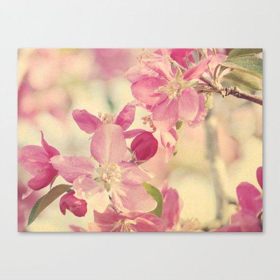 Pink Crabapple Blossom Canvas Print