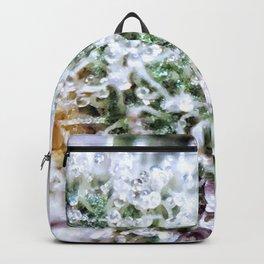 Platinum Purple Trichs OG Kush x Purple Urkle Strains Backpack