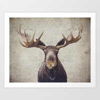 moose Art Prints featuring Moose by Retro Love Photography
