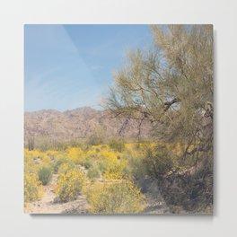 Joshua Tree Wildflowers Metal Print