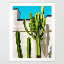 South Pasadena Cactus Art Print