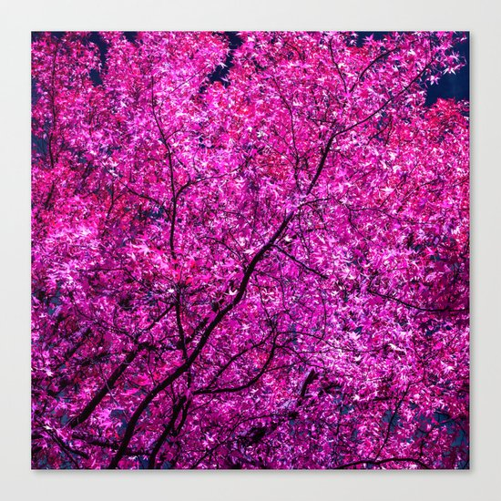violet tree IV Canvas Print