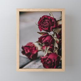 Red roses in Autumn, The Netherlands | Gorgeous closeups  | Photography fineart | Art Print Framed Mini Art Print