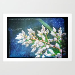 A Splash of Flowers Art Print