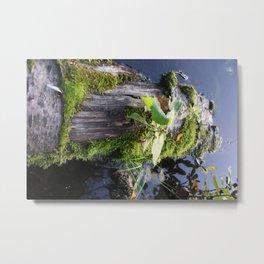 Floating on a Lake Metal Print