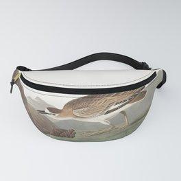Rocky mountain plover, Birds of America, Audubon Plate 350 Fanny Pack