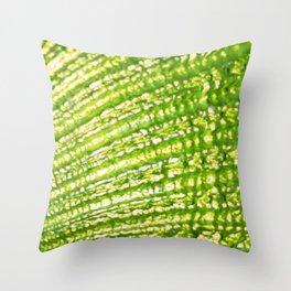 Seashell- Texture Lime Green Palettte Throw Pillow
