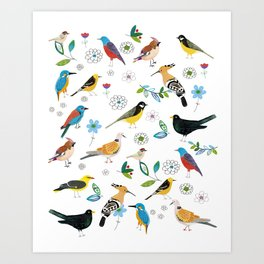 Polish birds Art Print