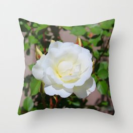 Best of Show, White Rose Throw Pillow