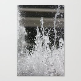 Water16 Canvas Print