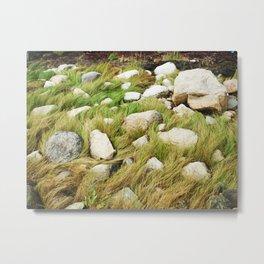 Maine Seagrass Metal Print