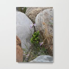 Shot in Rocks Metal Print