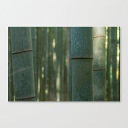 Arashiyama Bamboo Canvas Print