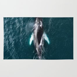 Humpback Whale in Iceland - Wildlife Photography Rug