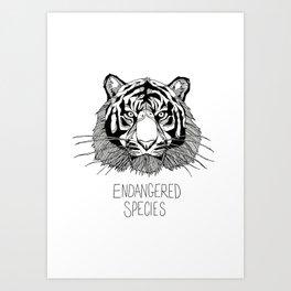 Endangered Species Tiger Art Print