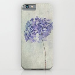 Beautiful Blue Hydrangea iPhone Case