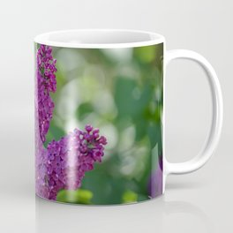 Lilac scent in the spring Coffee Mug