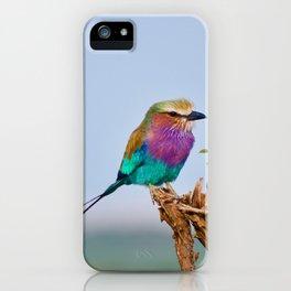 wildlife in Kenya #society6 #decor #buyart iPhone Case