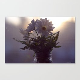 Daisy's Canvas Print