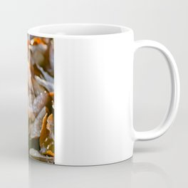 The Fallen Coffee Mug