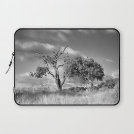 Windy sunset. Wonderful mountain almond Laptop Sleeve