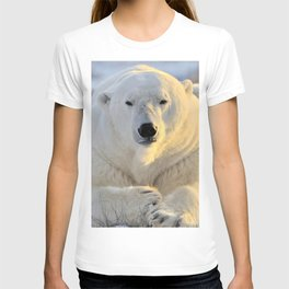 Majestic Giant Adult Polar Ice Bear Sitting On Cold Ground Close Up Ultra HD T-shirt