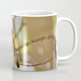 Hummingbird Beauty Coffee Mug