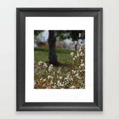 Midday Meadow Framed Art Print