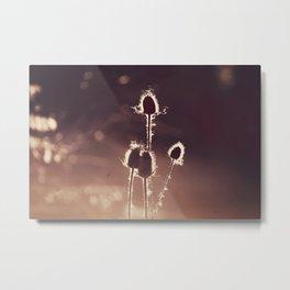 nature1 Metal Print