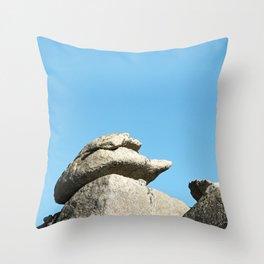 Stonework Throw Pillow